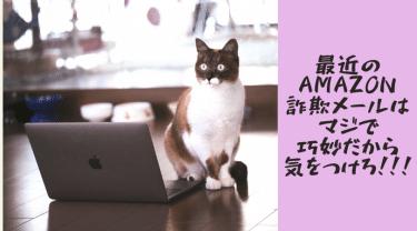 【対応法アリ】最近のAmazon詐欺メールはマジで巧妙だから気をつけろ!!!